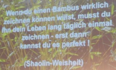 ECON Redner Klaus Rempe Bambus-Prinzip